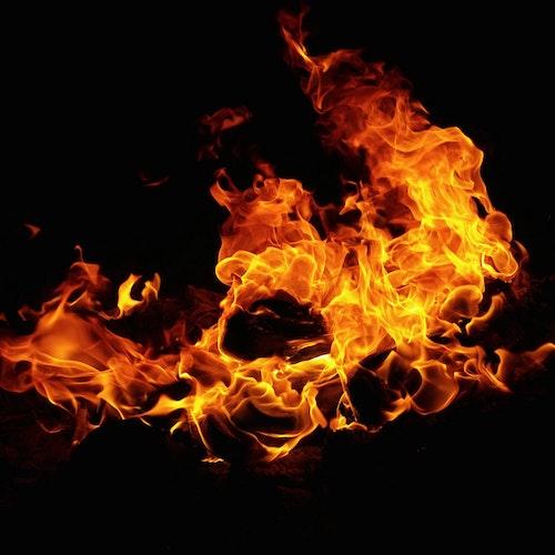 burçlar - ateş grubu